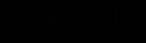 bolle-interim-b-v